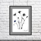 Ilustracje, rysunki, fotografia grafika,rysunek,na ścianę,wnętrze,dom,kwiat