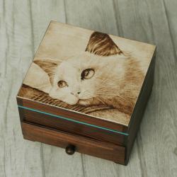 pirografia,kot,szkatułka - Pudełka - Wyposażenie wnętrz