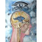 Obrazy głowa,lekarz,obraz,wnętrze,na ścianę,oko,oczy,